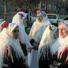 Grecii din Tulcea. Oamenii si obiceiurile lor