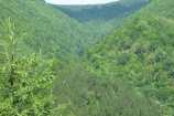 Transilvania – judetul Cluj – date geografice si localizare